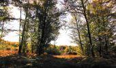 Randonnée Marche SAINT-JEAN-AUX-BOIS - en forêt de Compiègne_21_la Muette_les Clavières_la Brévière - Photo 44