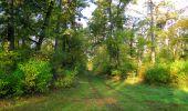 Trail Walk SAINT-JEAN-AUX-BOIS - en forêt de Compiègne_21_la Muette_les Clavières_la Brévière - Photo 16
