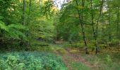 Randonnée Marche SAINT-JEAN-AUX-BOIS - en forêt de Compiègne_21_la Muette_les Clavières_la Brévière - Photo 10