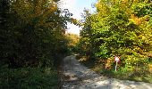 Randonnée Marche SAINT-JEAN-AUX-BOIS - en forêt de Compiègne_21_la Muette_les Clavières_la Brévière - Photo 75