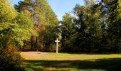 Randonnée Marche SAINT-JEAN-AUX-BOIS - en forêt de Compiègne_21_la Muette_les Clavières_la Brévière - Photo 3