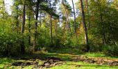Randonnée Marche SAINT-JEAN-AUX-BOIS - en forêt de Compiègne_21_la Muette_les Clavières_la Brévière - Photo 107