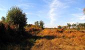 Randonnée Marche SAINT-JEAN-AUX-BOIS - en forêt de Compiègne_21_la Muette_les Clavières_la Brévière - Photo 45