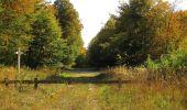 Trail Walk SAINT-JEAN-AUX-BOIS - en forêt de Compiègne_21_la Muette_les Clavières_la Brévière - Photo 112