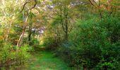 Randonnée Marche SAINT-JEAN-AUX-BOIS - en forêt de Compiègne_21_la Muette_les Clavières_la Brévière - Photo 100