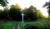 Trail Walk SAINT-JEAN-AUX-BOIS - en forêt de Compiègne_21_la Muette_les Clavières_la Brévière - Photo 5