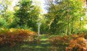 Randonnée Marche SAINT-JEAN-AUX-BOIS - en forêt de Compiègne_21_la Muette_les Clavières_la Brévière - Photo 147