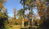 Randonnée Marche SAINT-JEAN-AUX-BOIS - en forêt de Compiègne_21_la Muette_les Clavières_la Brévière - Photo 52