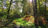Randonnée Marche SAINT-JEAN-AUX-BOIS - en forêt de Compiègne_21_la Muette_les Clavières_la Brévière - Photo 146