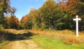 Randonnée Marche SAINT-JEAN-AUX-BOIS - en forêt de Compiègne_21_la Muette_les Clavières_la Brévière - Photo 35