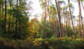 Randonnée Marche SAINT-JEAN-AUX-BOIS - en forêt de Compiègne_21_la Muette_les Clavières_la Brévière - Photo 97