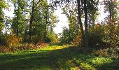 Randonnée Marche SAINT-JEAN-AUX-BOIS - en forêt de Compiègne_21_la Muette_les Clavières_la Brévière - Photo 32