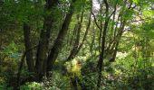 Randonnée Marche SAINT-JEAN-AUX-BOIS - en forêt de Compiègne_21_la Muette_les Clavières_la Brévière - Photo 77