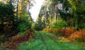 Trail Walk SAINT-JEAN-AUX-BOIS - en forêt de Compiègne_21_la Muette_les Clavières_la Brévière - Photo 22