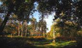 Trail Walk SAINT-JEAN-AUX-BOIS - en forêt de Compiègne_21_la Muette_les Clavières_la Brévière - Photo 59