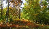 Randonnée Marche SAINT-JEAN-AUX-BOIS - en forêt de Compiègne_21_la Muette_les Clavières_la Brévière - Photo 96