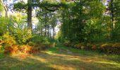 Trail Walk SAINT-JEAN-AUX-BOIS - en forêt de Compiègne_21_la Muette_les Clavières_la Brévière - Photo 28