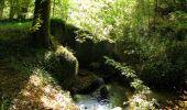 Randonnée Marche SAINT-JEAN-AUX-BOIS - en forêt de Compiègne_21_la Muette_les Clavières_la Brévière - Photo 76