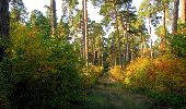 Randonnée Marche SAINT-JEAN-AUX-BOIS - en forêt de Compiègne_21_la Muette_les Clavières_la Brévière - Photo 13