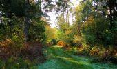 Randonnée Marche SAINT-JEAN-AUX-BOIS - en forêt de Compiègne_21_la Muette_les Clavières_la Brévière - Photo 134