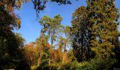 Randonnée Marche SAINT-JEAN-AUX-BOIS - en forêt de Compiègne_21_la Muette_les Clavières_la Brévière - Photo 132
