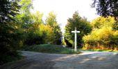 Randonnée Marche SAINT-JEAN-AUX-BOIS - en forêt de Compiègne_21_la Muette_les Clavières_la Brévière - Photo 36