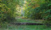 Trail Walk SAINT-JEAN-AUX-BOIS - en forêt de Compiègne_21_la Muette_les Clavières_la Brévière - Photo 3