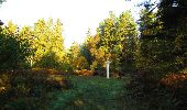 Randonnée Marche SAINT-JEAN-AUX-BOIS - en forêt de Compiègne_21_la Muette_les Clavières_la Brévière - Photo 23