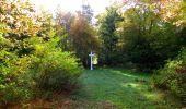 Randonnée Marche SAINT-JEAN-AUX-BOIS - en forêt de Compiègne_21_la Muette_les Clavières_la Brévière - Photo 55