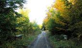 Randonnée Marche SAINT-JEAN-AUX-BOIS - en forêt de Compiègne_21_la Muette_les Clavières_la Brévière - Photo 117