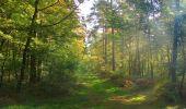 Randonnée Marche SAINT-JEAN-AUX-BOIS - en forêt de Compiègne_21_la Muette_les Clavières_la Brévière - Photo 48