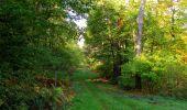Randonnée Marche SAINT-JEAN-AUX-BOIS - en forêt de Compiègne_21_la Muette_les Clavières_la Brévière - Photo 53