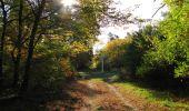 Randonnée Marche SAINT-JEAN-AUX-BOIS - en forêt de Compiègne_21_la Muette_les Clavières_la Brévière - Photo 108