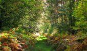 Randonnée Marche SAINT-JEAN-AUX-BOIS - en forêt de Compiègne_21_la Muette_les Clavières_la Brévière - Photo 58