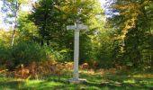 Trail Walk SAINT-JEAN-AUX-BOIS - en forêt de Compiègne_21_la Muette_les Clavières_la Brévière - Photo 138