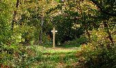 Trail Walk SAINT-JEAN-AUX-BOIS - en forêt de Compiègne_21_la Muette_les Clavières_la Brévière - Photo 121
