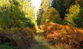 Randonnée Marche SAINT-JEAN-AUX-BOIS - en forêt de Compiègne_21_la Muette_les Clavières_la Brévière - Photo 21