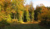 Randonnée Marche SAINT-JEAN-AUX-BOIS - en forêt de Compiègne_21_la Muette_les Clavières_la Brévière - Photo 7