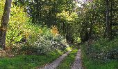 Randonnée Marche SAINT-JEAN-AUX-BOIS - en forêt de Compiègne_21_la Muette_les Clavières_la Brévière - Photo 129