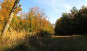 Trail Walk SAINT-JEAN-AUX-BOIS - en forêt de Compiègne_21_la Muette_les Clavières_la Brévière - Photo 94