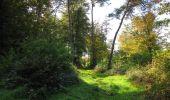 Randonnée Marche SAINT-JEAN-AUX-BOIS - en forêt de Compiègne_21_la Muette_les Clavières_la Brévière - Photo 26