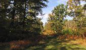Trail Walk SAINT-JEAN-AUX-BOIS - en forêt de Compiègne_21_la Muette_les Clavières_la Brévière - Photo 91