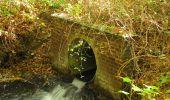 Trail Walk SAINT-JEAN-AUX-BOIS - en forêt de Compiègne_21_la Muette_les Clavières_la Brévière - Photo 76