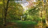 Randonnée Marche SAINT-JEAN-AUX-BOIS - en forêt de Compiègne_21_la Muette_les Clavières_la Brévière - Photo 81