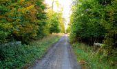 Randonnée Marche SAINT-JEAN-AUX-BOIS - en forêt de Compiègne_21_la Muette_les Clavières_la Brévière - Photo 116