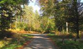 Randonnée Marche SAINT-JEAN-AUX-BOIS - en forêt de Compiègne_21_la Muette_les Clavières_la Brévière - Photo 37