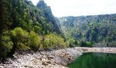 Randonnée Marche LA BRESSE - Le Hohneck - Le Valtin - Tour des Lacs des Vosges - Étape 3 - Photo 1