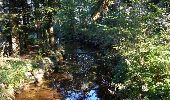 Randonnée Marche LE VALTIN - Le Valtin - Gerardmer - Tour des Lacs des Vosges - Étape 4 - Photo 1