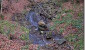 Randonnée Marche BUSSANG - Cascade de l'Ours - Bussang - Photo 2