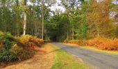 Trail Walk SAINT-JEAN-AUX-BOIS - en forêt de Compiègne_22_la Muette_le Mont Arcy_le Fort Poirier - Photo 48